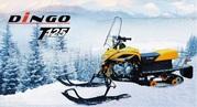 Продам снегоходы DINGO T-125