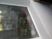 Ваши теплые окна!!!