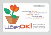 Доставка цветов  и букетов,  оформление праздников по г. Астана