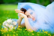 Свадебная Видеосъёмка (Услуги Видеооператора)