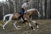 обучение верховой езде в астане