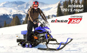 Разборный снегоход Irbis Dingo T150
