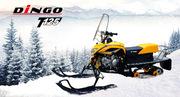 Разборный снегоход Irbis Dingo T125