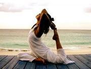 Студя йоги