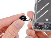 Замена кнопки Home на всех моделях Iphone