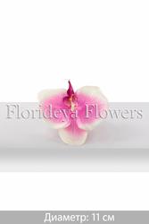 Искусственные цветы от завода изготовителя,  продажа,  аренда